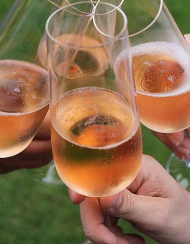 rosewine - Weinkategorien