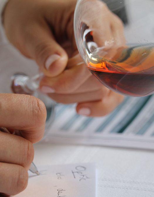 seminare Wein fur Einsteiger 525x670 - Wein für Einsteiger